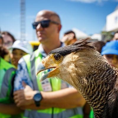 Tour ambiental e programa de conscientização são atrações da Semana do Meio Ambiente do Salvador Bahia Airport
